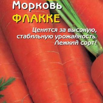 Можно и какие сорта моркови сажать под зиму